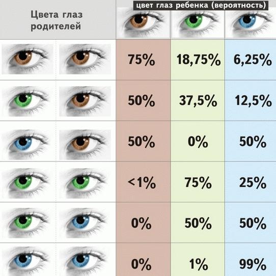 Схема примерного определения цвета глаз ребенка