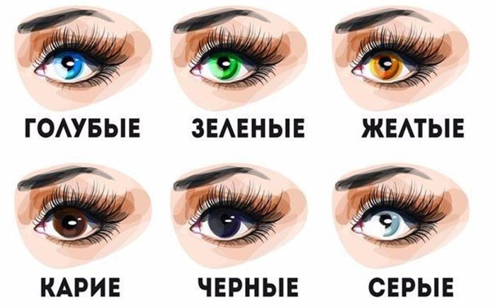 Цвета глаз у людей