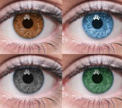 Глаза разных цветов