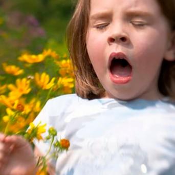 Девочка хочет чихнуть