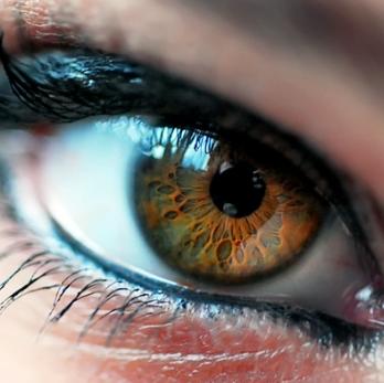 Болотный цвет у глаз